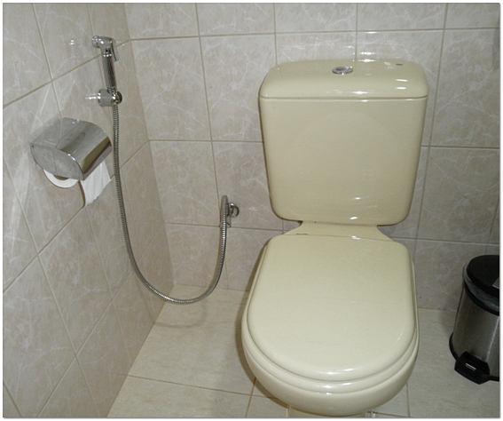 дизайн маленького туалета 2012 фото