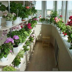 Балкон – это не только кладовая: 5 лучших вариантов преображения балкона