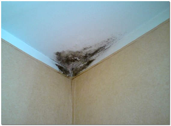 Плохой ремонт квартиры фото