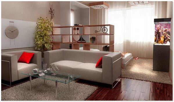 Зонирование однокомнатной квартиры мебелью фото